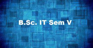 Bsc-IT SEM-V