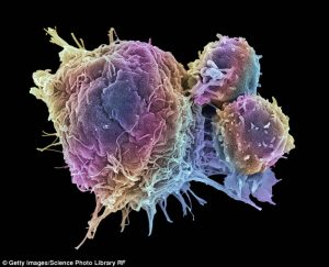 microsoft-cancer-solving